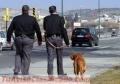Buscamos personal de seguridad y vigilantes para diversos centros comerciales