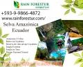 Selva amazonica ecuador